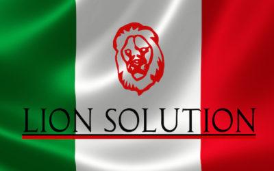 CRM Partnership program Lion Solution