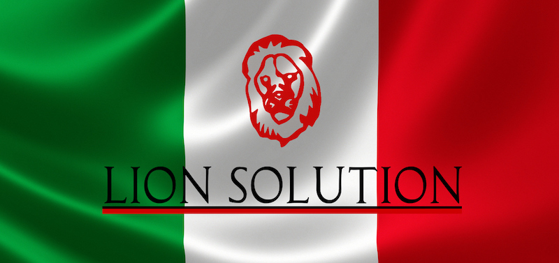 CRM Partnership program Lion Solution